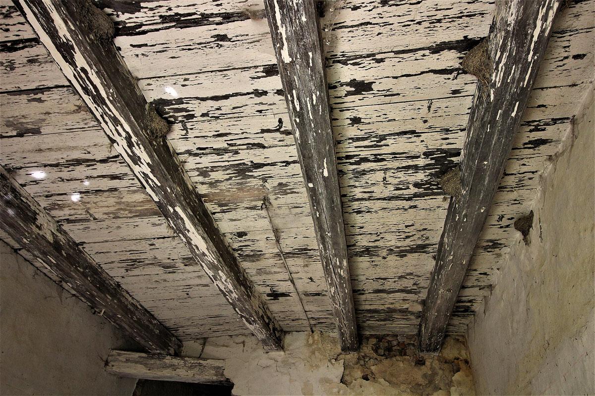 Olšovský dvůr strop v síni před demolicí